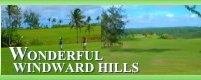 Wonderful Windward Hills